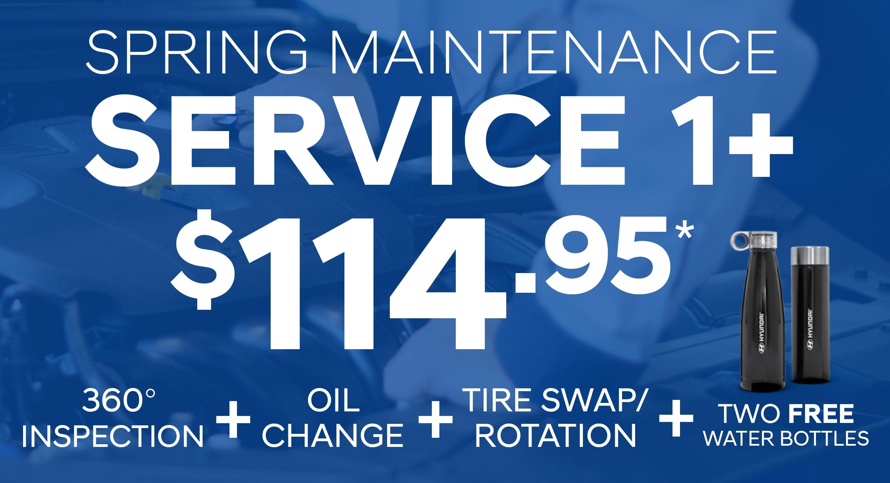 Spring Maintenance Service